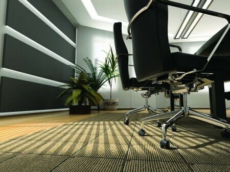 Commercial carpet cleaning office