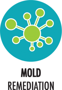 mold-remediation-icon