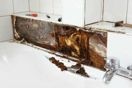 Water damage moldy wood