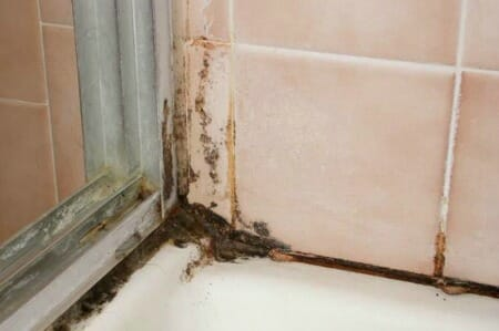 mold vs mildew what are the key differences With brown mould in bathroom
