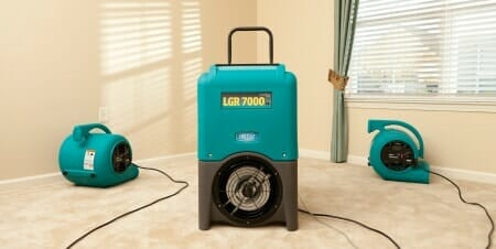 how to dry a wet carpet to avoid mold growth 2 diy steps rh servicemasterbyzaba com  how to stop black mold in basement