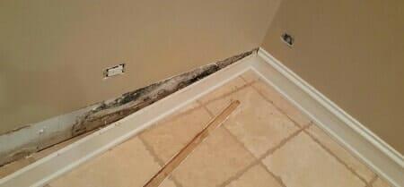 mold behind wallboard basement