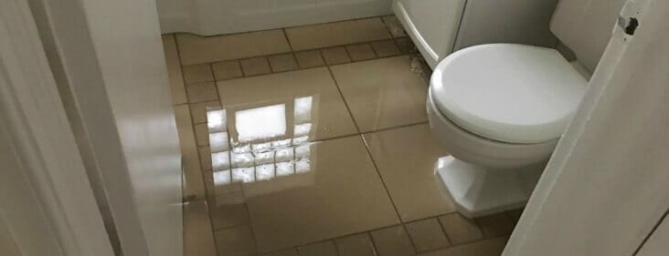 Flooded Bathroom Here Are 10 Essential