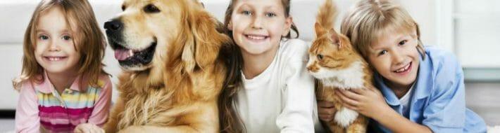 pet carpet cleaning services