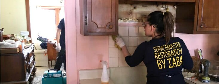 professional home deep cleaning service