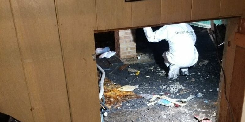 crawl space cleaning chicago
