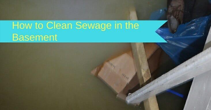 sewage in basement