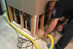source of mold in glenview home