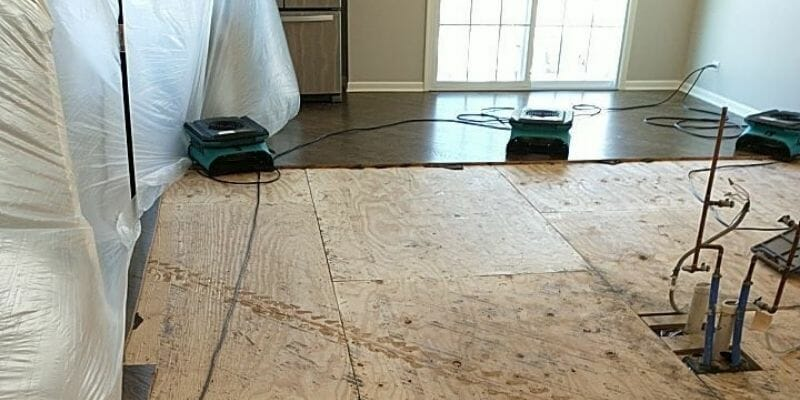 subfloor water damage cleanup