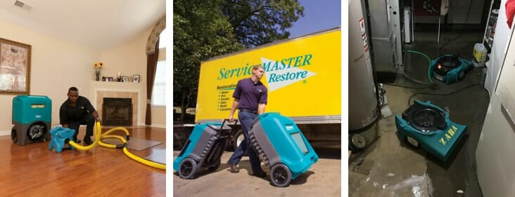 servicemaster water removal technicians in chicago home