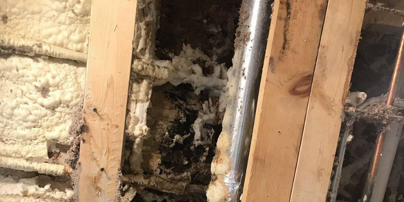 contractor water damage