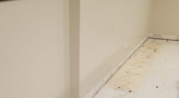 mold inside apartment building hallway