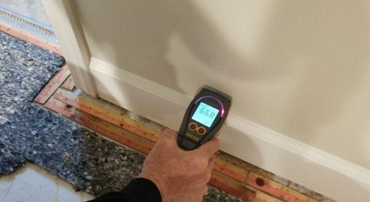 moisture meter for water damage