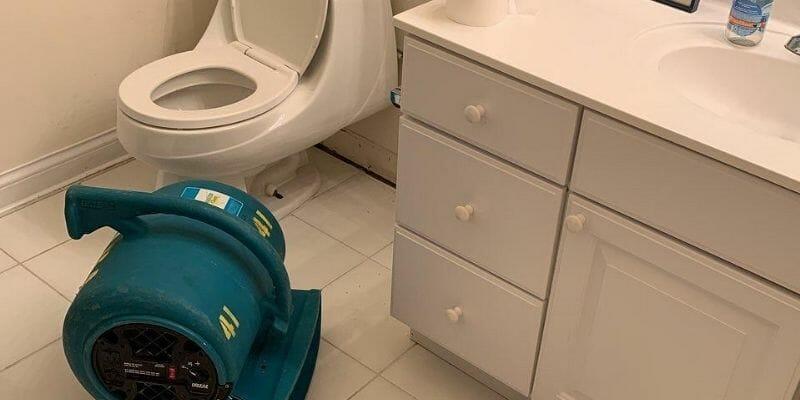 toilet overflow restoration