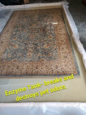 area rug cleaning evanston il odor removal tank