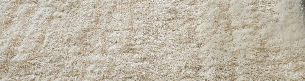 how to clean shag rug chicago
